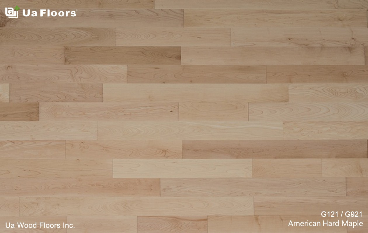 Ua Floors - PRODUCTS|American Hard Maple Hardwood Flooring